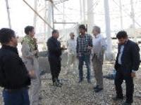 بازدید مدیرعامل شرکت آب و فاضلاب ایلام از زیر ساخت های اربعین در مرز مهران